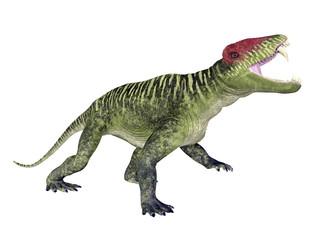 Dinosaur Doliosauriscus