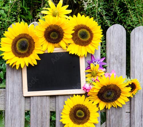 gartenzaun tafel zum beschriften mit sonnenblumen. Black Bedroom Furniture Sets. Home Design Ideas