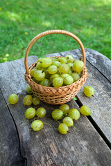 gooseberry in a basket on wooden background