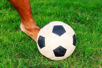 Soccer football field stadium grass  background texture