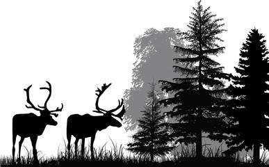 deer silhouettes in forest isolated on white background