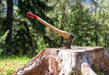 Tree Cutting Axe photos, royalty-free images, graphics
