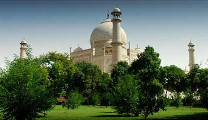 Wall Mural - Taj Mahal