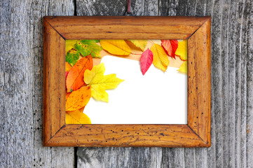 Old wooden frame with autumn leaves on a old wooden