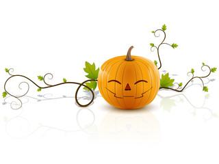 pumpkin laughs2