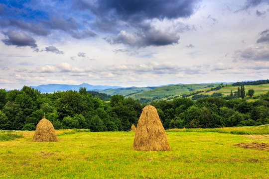 haystacks in a field near the forest and mountain