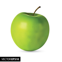 Fresh green realistic apple on white background
