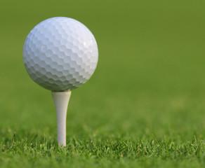 Golf ball on green grass. Closeup