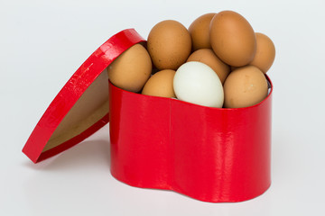 gift box and egg