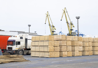 timber wood piles deposit for export