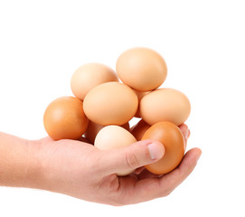 hands holding eggs isolated