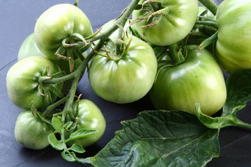 Photos illustrations et vid os de tomates vertes - Cuisiner des tomates vertes ...