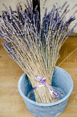 Violet dry lavender flowers in the blue ceramic pot