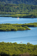Tropical landscape with mangrove islets