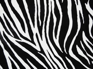 Aluminium Prints Zebra Texture of black and white zebra textile