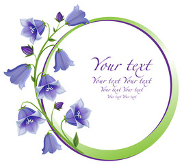 Flower frame. Bouquet Campanula bell isolated.