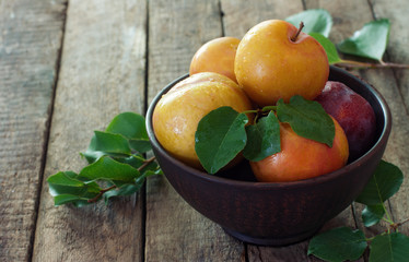 Plums in clay pot