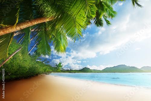 природа море пляж солнце  № 970674  скачать