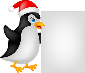 funny penguin cartoon xmas with blank sign