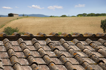 Roofs with landscape