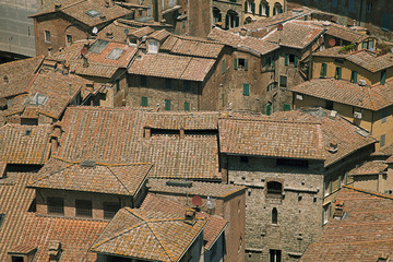 Fototapete - Typical house roofs in Siena, Italy