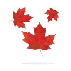 red maple leaf isolated on white background. Vector