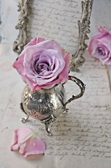 Wall Mural - rose and antiques