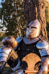 Printed kitchen splashbacks Knights Medieval knight