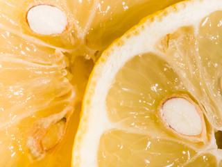 Acrylic Prints Slices of fruit Lemon slices