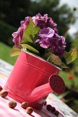 Dekoration mit Gießkanne, Hortensien und Nüssen