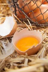 Fresh egg broken open to reveal the yolk