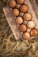 Ten brown eggs in a cardboard carton on straw