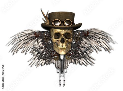 steampunk skull stockfotos und lizenzfreie bilder auf. Black Bedroom Furniture Sets. Home Design Ideas