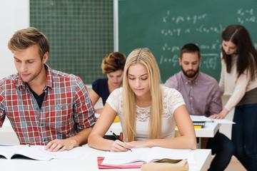 studenten arbeiten konzentriert im seminar