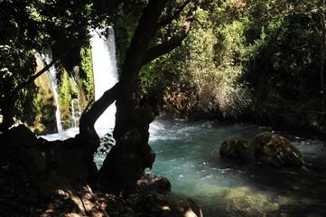 Waterfall in Banias