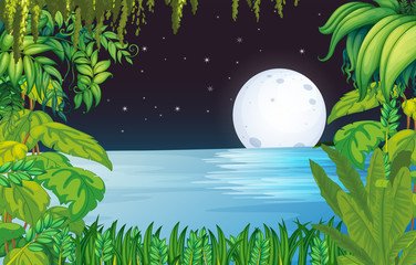 A lake in the forest under the bright fullmoon