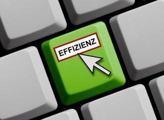 Effizienz online