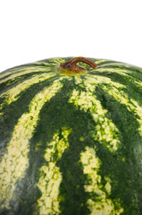 Variegated rind of a watermelon
