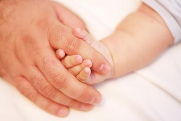 bebek eli