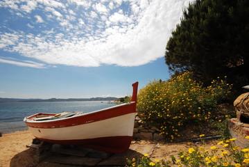 Barca a terra