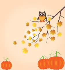 vector fall branch with owl and pumpkins