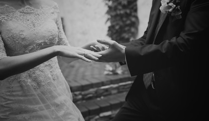 hands of a young newly wed couple