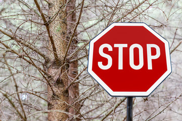 stop sign in the forest