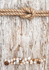 Ship rope, shells and wood background