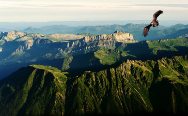 Wall Mural - flying above the Alps