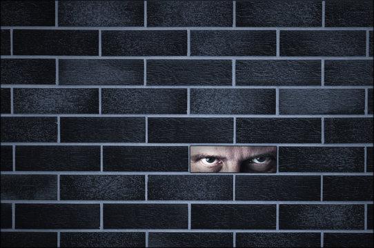 Hidden spy