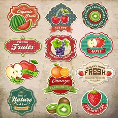 Collection of vintage retro grunge fresh fruit design elements