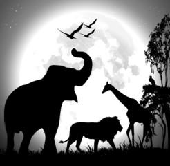 Animal safari vector over the full moon