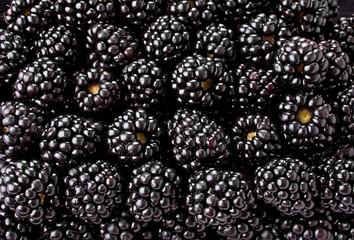 Blackberry fruit background