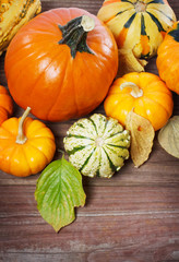 Pumpkins and squashes and autumn leaves